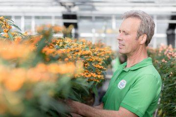 Gartenbau Wilfried Harden